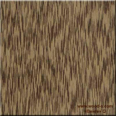 shpon_woodstock_463